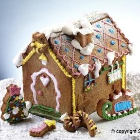 Moule en Silicone Sweet Home ~ 18 cm