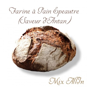 "Farine à Pain Épeautre Mix ""All-In"""