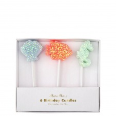 Bougies coquillages 6p