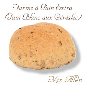 """Farine Pain Extra Mix """"All-In"""""""